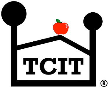 TCIT (Teacher-Child Interaction Training – Universal)